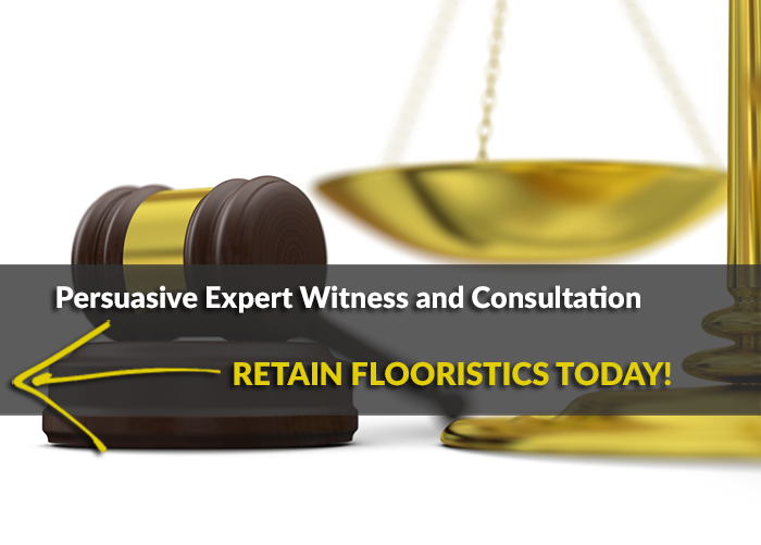 ex-witness-slide